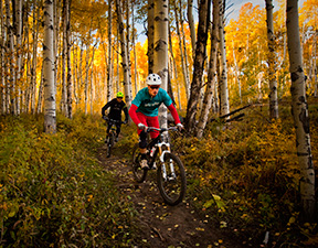 Private Downhill Mountain Biking Snowmass
